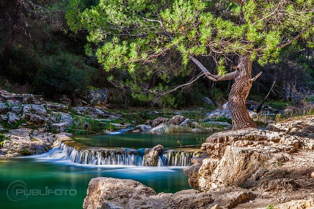 Curso fotografía de paisaje y naturaleza