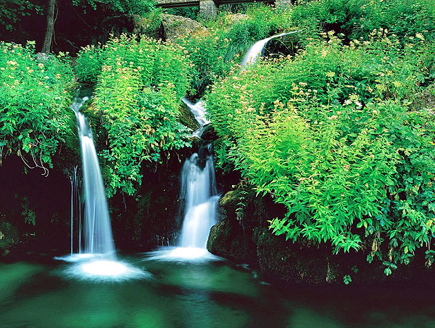 Cursos de fotografía paisaje y naturaleza