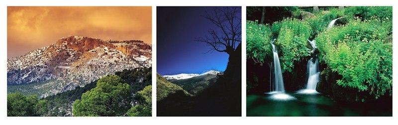 Fotografía de paisaje y natrualeza